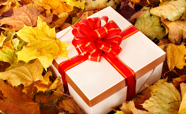 ThanksgivingGift_main